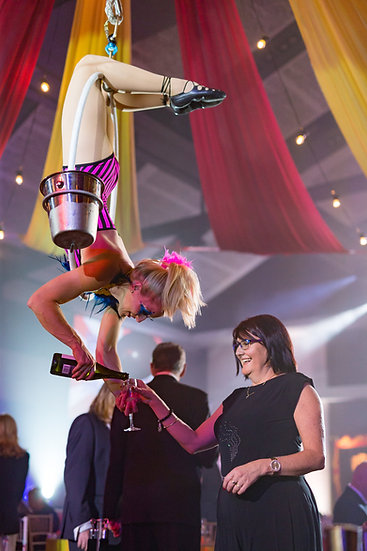Columbus Ohio aerial cocktail service - aerial bartending - Champagne aerial dancers - corporate entertainment- trade shows