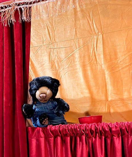 Columbus, Ohio Puppet shows for parties and events