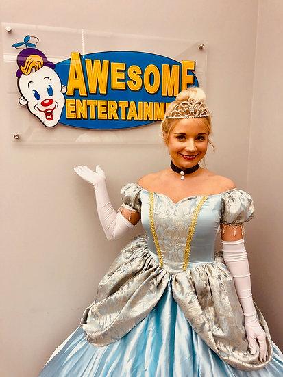 Columbus Ohio Cinderella princess parties Columbus Ohio princess birthday party characters -Worthington Ohio,