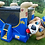 Bexley, Ohio Bounce house rentals - Columbus Ohio Moon Walk Rentals, Columbus Ohio Jumpy House, Police Dog themed bounce OH