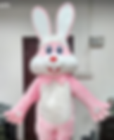 Pink Easter Bunny Costume for parties Ohio