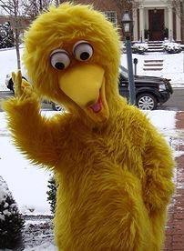 Big Bird Costume Rentals, Columbus Ohio Big bird party characters for hire, Ohio cartoon characters...