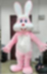Easter bunny Singing Telegram Service, Ohio