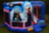 Frozen Theme Bounce house rental