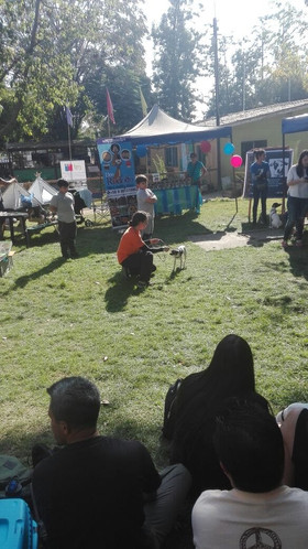 Kiltritos en Junta Terrier chileno