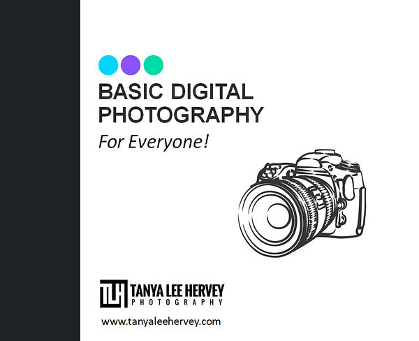 Basic Digital Photography For Everyone!