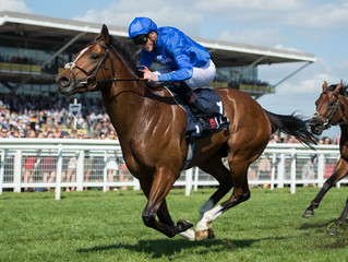 York Ebor Festival - Great Voltigeur & Juddmonte International Preview.