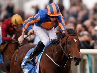 Irish Champion Stakes Preview