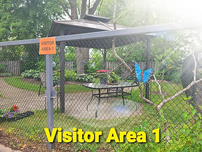 visitor area 1.jpg
