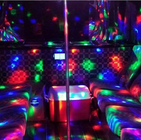 14 Passenger Party Bus Interior 1.jpg