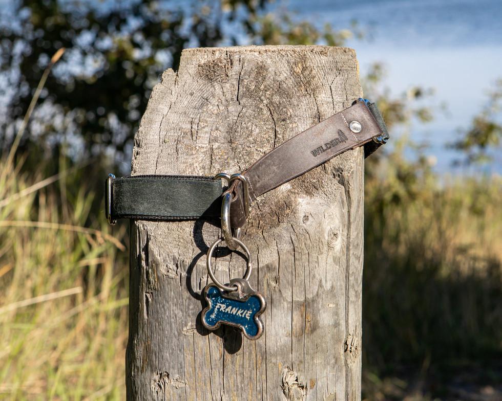 Nixx Photography Pigeon Lake-20.jpg