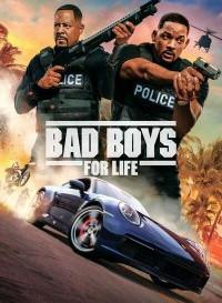 Bad Boys for Life (2020) Dual Audio (Hindi-English) BluRay 480p [400MB]    720p [1.1GB]   