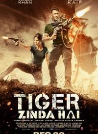 Tiger Zinda Hai (2017) Hindi Movie Bluray    720p [1.4GB]    1080p [2.7GB]