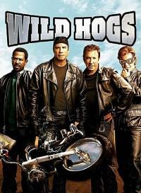Wild Hogs (2007) Dual Audio (Hindi-English) 480p [400MB] || 720p [800MB]