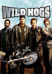 Wild Hogs (2007) Dual Audio (Hindi-English) 480p [400MB]    720p [800MB]
