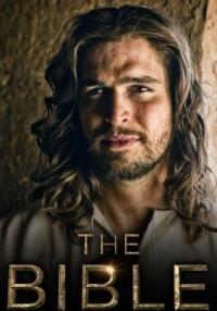 The Bible {Season 1} (Hindi-English) 720p [250MB]