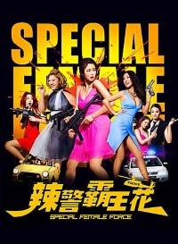 Special Female Force (2016) Dual Audio (Hindi-English) 480p [300MB]    720p [1GB]