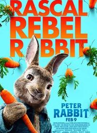 Peter Rabbit (2018) Dual Audio (Hindi-English) 480p [400MB] || 720p [1.1GB]