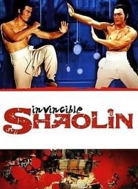 Invincible Shaolin (1978) Dual Audio (Hindi-Chinese) 480p [400MB] || 720p [1GB]