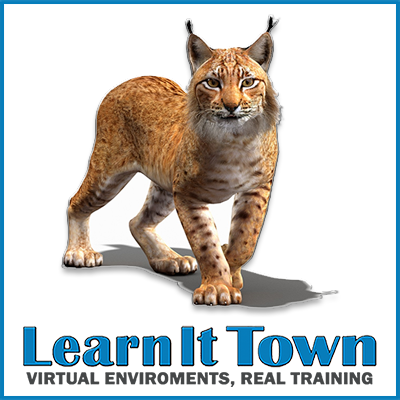 animals - lynx