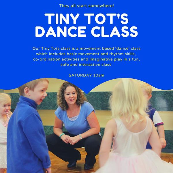 Tiny Tot's insta add 2020 gdc.png