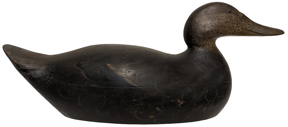 Premier Black Duck - Mason Decoy Factory