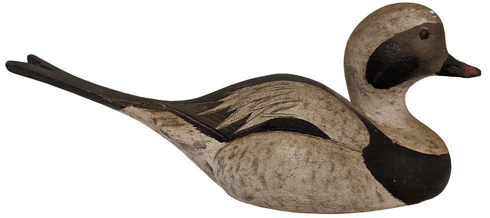 Miniature Old Squaw - Robert G. Kerr