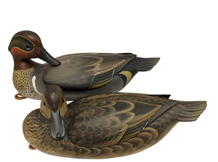Green-wing Teal Pair - George Strunk