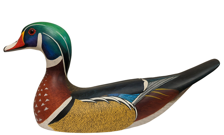 Wood Duck Drake - Robert G. Kerr