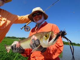 14 - Chafelote (vampire fish), Parana Ri