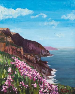 Cliffside Beauty by Collette Caprara oil
