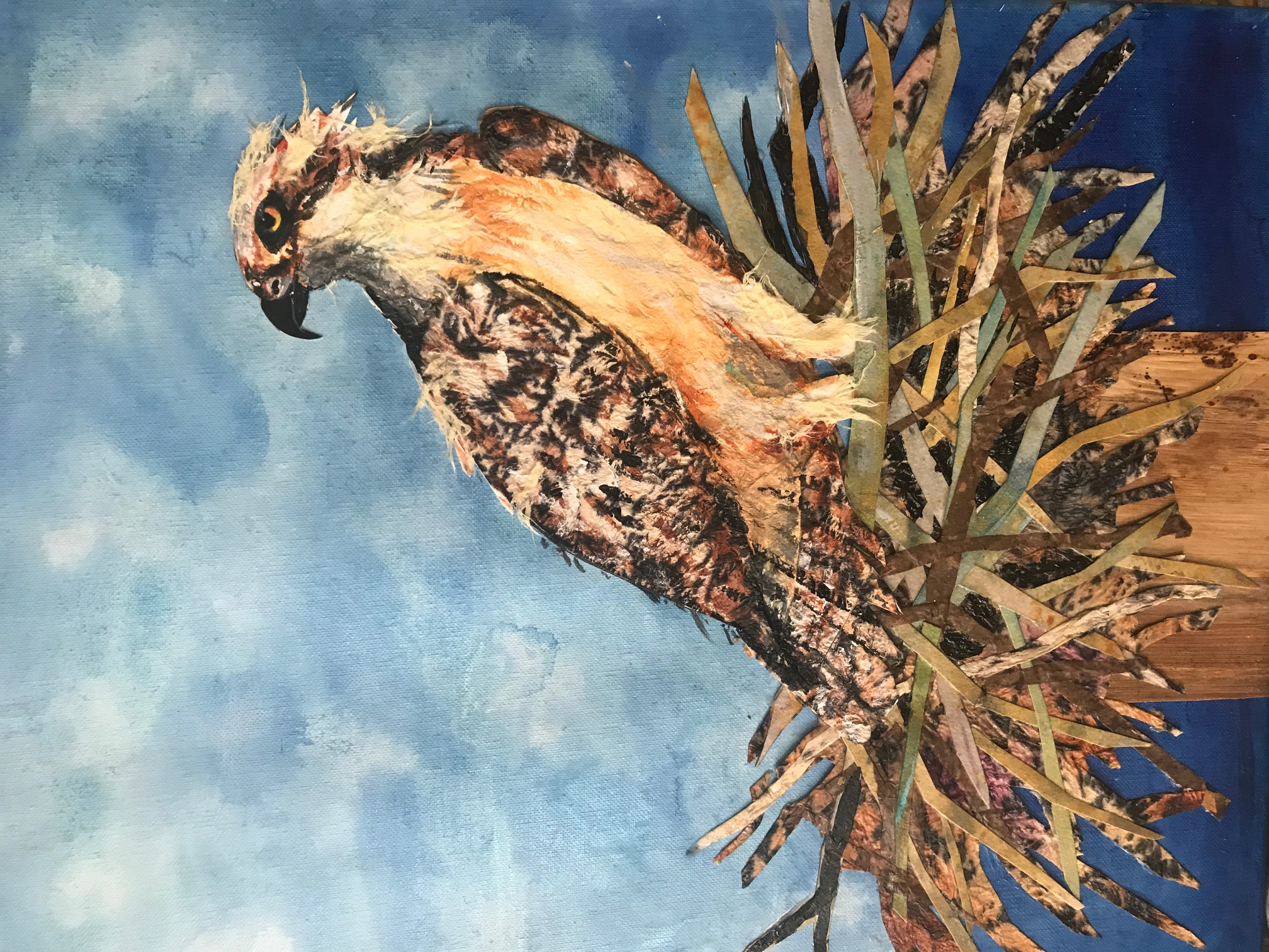 Osprey Mixed Media