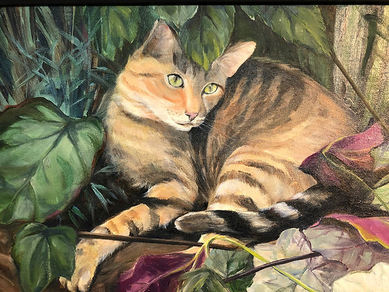 Kitty in the Bush