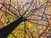 Stacy Gerise, Autumn in New York, 16x20, Acrylic, $275