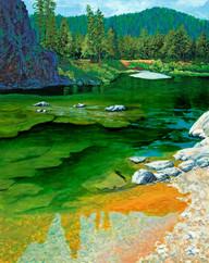 Blackfoot River - Red Rock - Website.jpg