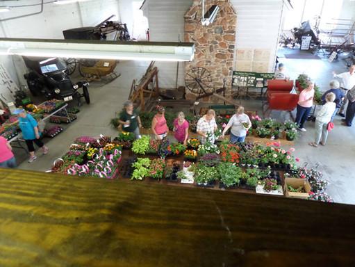 Plant Sale April 2017