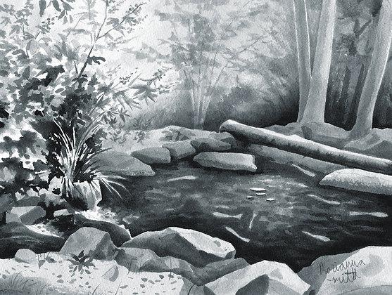 Virginia Water Gardens