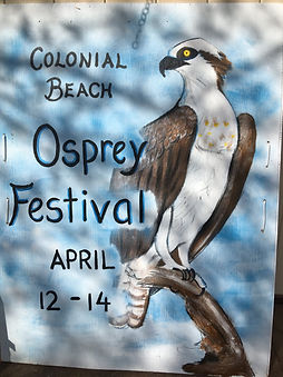 osprey festival