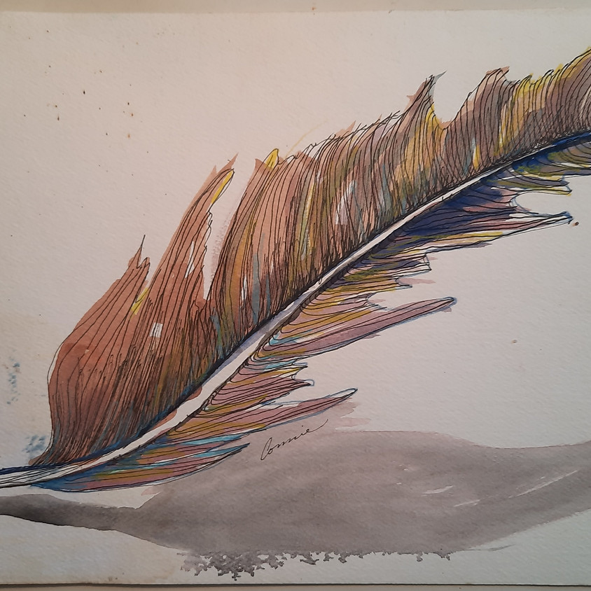 June, Learning to See, Beginning Drawing ( 3 Classes)