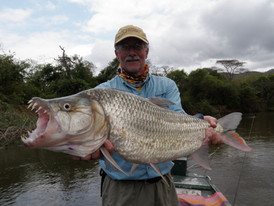 6-A  Tiger Fish, Tanzania.jpg