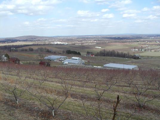 Farm-top-of-hill-C.jpg