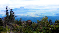 From Black Butte