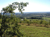 Farm-View-from-the-top-2.jpg