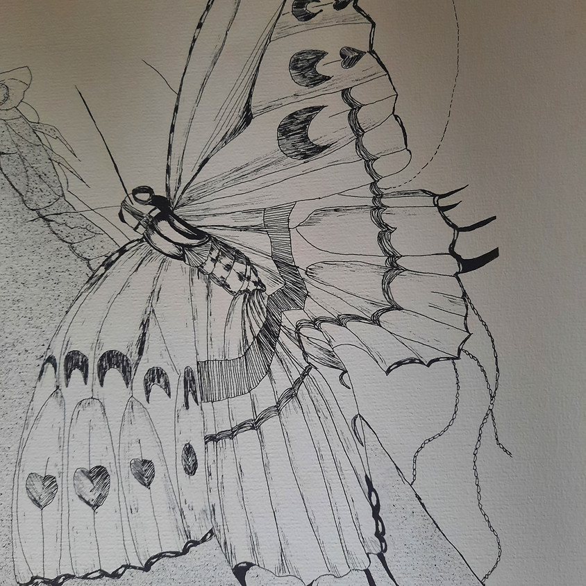 Learning to See, Beginning Drawing Class (3  2-hr Classes)
