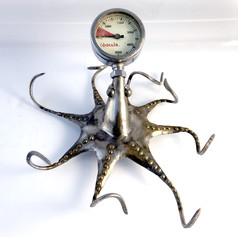 octopus_2.jpg