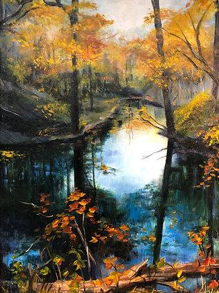 Autumn on Machodoc Creek