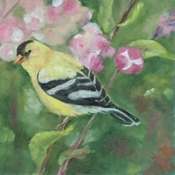 Gold Finch with Flowers