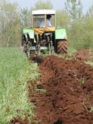 Tom-Plowing1.jpg