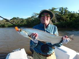 9 -Vampire Fish, Parana River, Goya, Arg