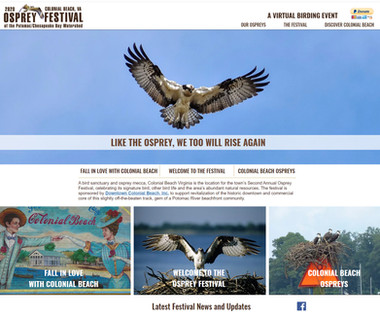 Virtual Osprey Festival of the Potomac/Chesapeake Watershed